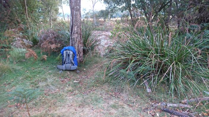 Leven River campsite